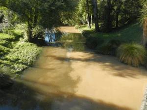 river brown